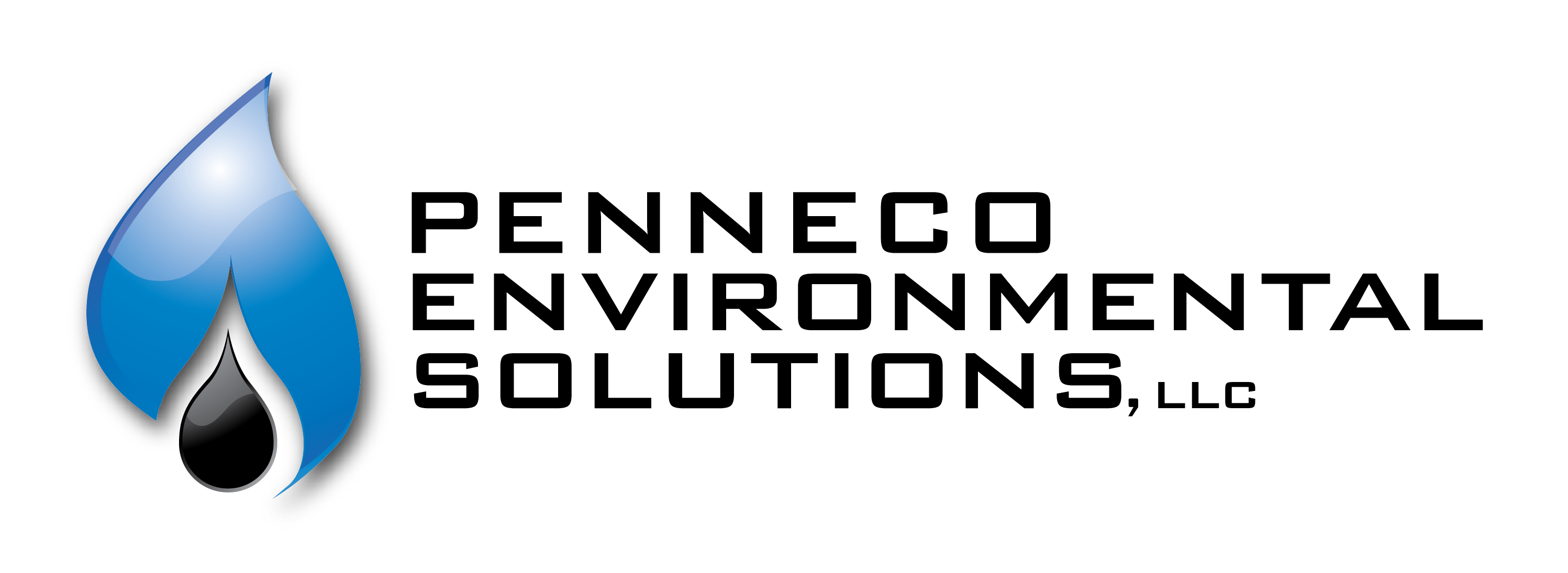 PES horizontal logo LLC TRANSPARENT